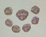 mauve shell fragment set