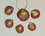 red pippi shells