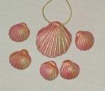 pink shell set
