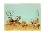 Reef Series No1